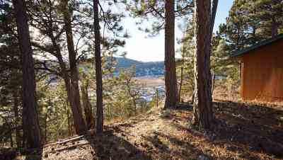 Sturgis Residential Lots & Land For Sale: 9013 S Ridge Trail