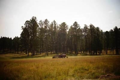Custer Single Family Home For Sale: 25553 Glen Erin Road