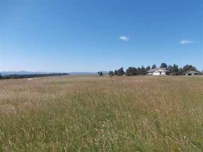Belle Fourche Residential Lots & Land For Sale: Lot 12a Block 1 Hat Ranch