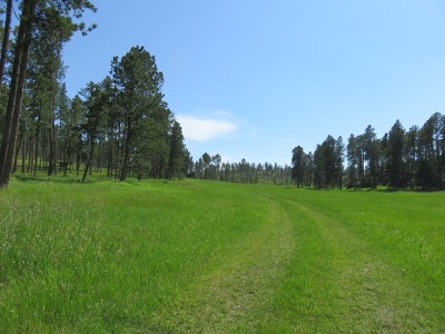 Custer County Residential Lots & Land For Sale: 25553 Glen Erin Road