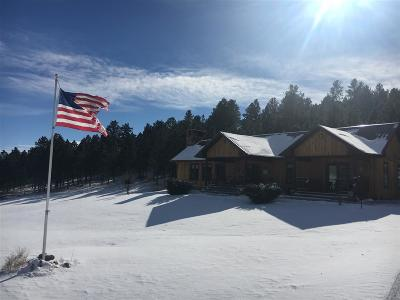 Custer County Single Family Home For Sale: 13815 Lh