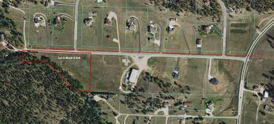 Rapid City Single Family Home For Sale: 13431 Sawmill