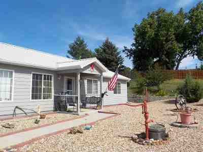 Belle Fourche Single Family Home For Sale: 836 Stone Ridge Dr.