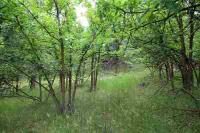 Deadwood Residential Lots & Land For Sale: Ranch