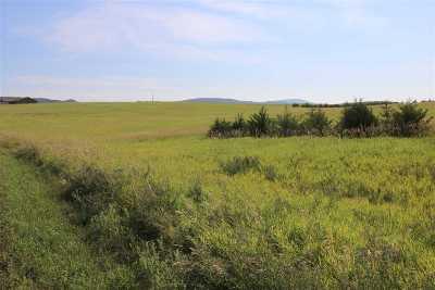 Sturgis Residential Lots & Land For Sale: 12685 Rifle Ridge