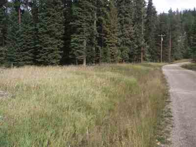 Deadwood, Lead Residential Lots & Land For Sale: Lot 9a Jack Pine Court