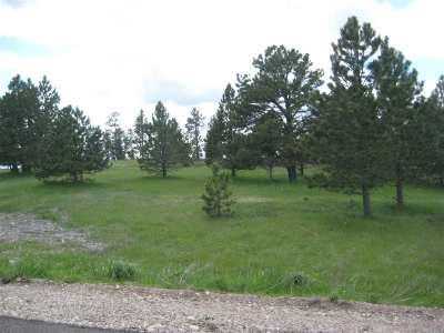 Spearfish Residential Lots & Land For Sale: Lot 14 Gobbler
