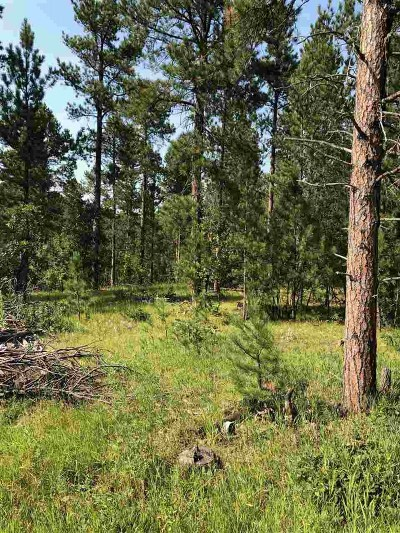 Sturgis Residential Lots & Land For Sale: Lot 12 Florence