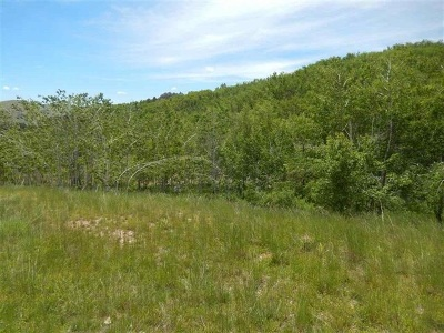 Deadwood Residential Lots & Land For Sale: 763 Stage Run Rd