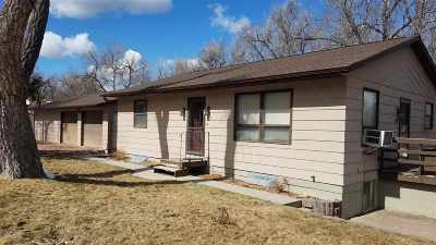 Hot Springs Single Family Home Uc-Contingency-Take Bkups: 246 S 19th