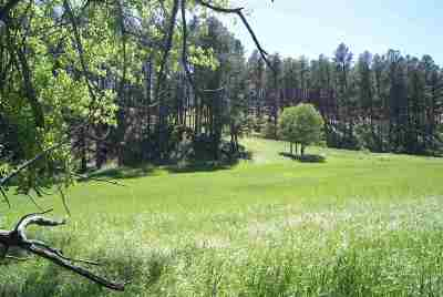 Custer SD Residential Lots & Land Under Contract-Dont Show: $106,900