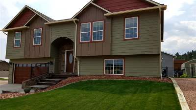Sturgis SD Single Family Home For Sale: $289,000