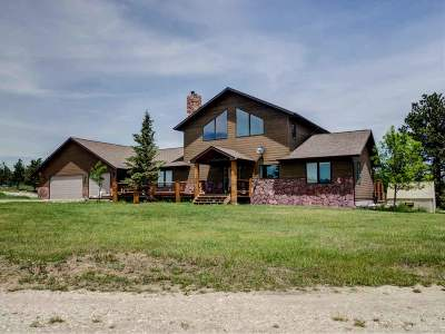 Custer Single Family Home For Sale: 12375 Hall