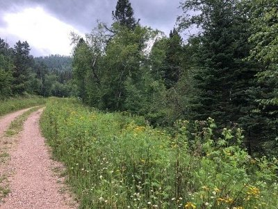Spearfish SD Residential Lots & Land For Sale: $45,000
