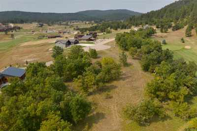 Sturgis Residential Lots & Land For Sale: Lot 1a Upper Vacation