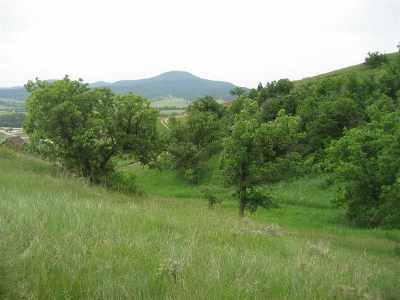 Spearfish SD Residential Lots & Land For Sale: $112,900
