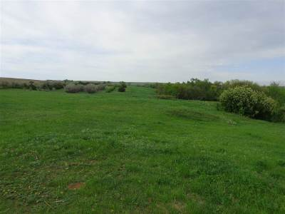 Faith SD Farm & Ranch For Sale: $3,146,198