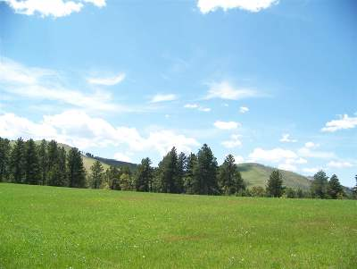 Deadwood Residential Lots & Land For Sale: Tracts 2 & 3 Coe