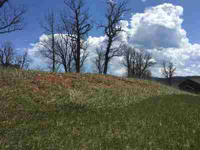 Sturgis Residential Lots & Land For Sale: 12257 Vacation
