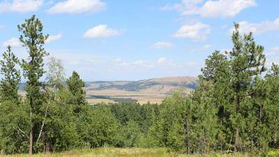 Spearfish Residential Lots & Land Uc-Contingency-Take Bkups: Lazy Horse Lane