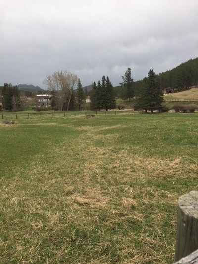 Hill City SD Residential Lots & Land For Sale: $435,000