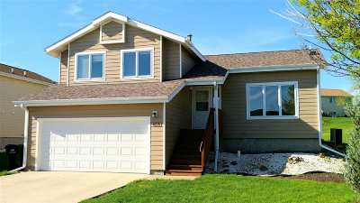 Rapid City Single Family Home For Sale: 4221 Range View