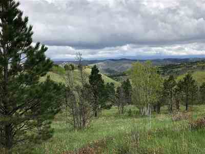 Deadwood Residential Lots & Land For Sale: Moon Mountain Lane