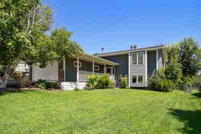 Rapid City Single Family Home For Sale: 706 Circle Dr.