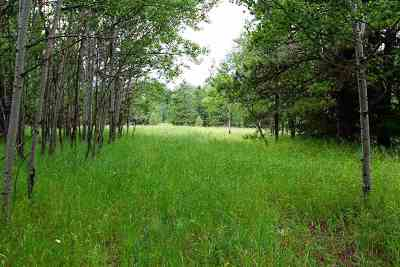 Deadwood Residential Lots & Land For Sale: Lot 1 Gumpy
