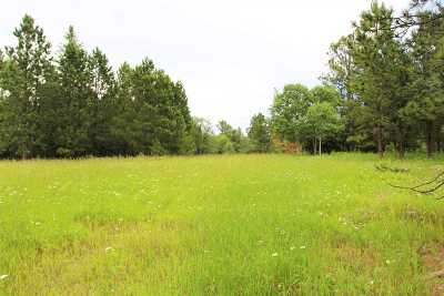 Deadwood Residential Lots & Land For Sale: Lot 2 Harrold Lode