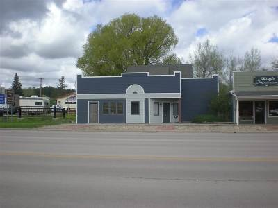 Custer County Commercial For Sale: 819 Mt. Rushmore Road