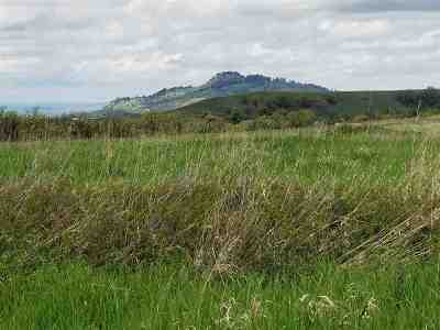 Spearfish SD Residential Lots & Land For Sale: $332,000