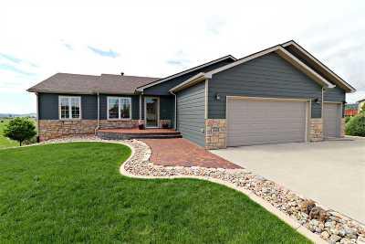 Pennington County Single Family Home For Sale: 4225 Portrush
