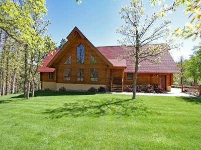 Sturgis Single Family Home For Sale: 20770 Mountain Court