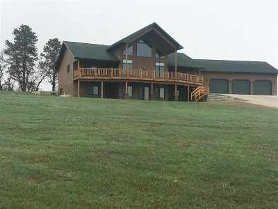 Whitewood SD Single Family Home For Sale: $875,000