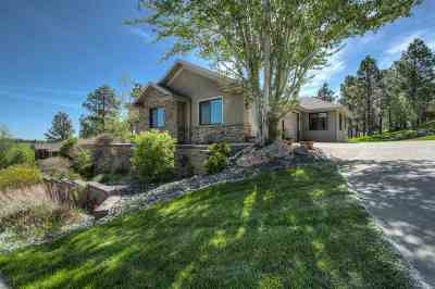 Rapid City Single Family Home For Sale: 6642 Carnoustie