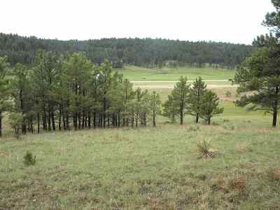 Custer County Residential Lots & Land For Sale: Parcel Id 006608