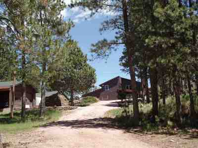 Custer County Single Family Home For Sale: 11820 Custer Limestone Road