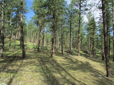 Pennington County Residential Lots & Land For Sale: Devin