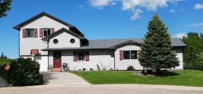 Sturgis Single Family Home For Sale: 1517 Whitetail