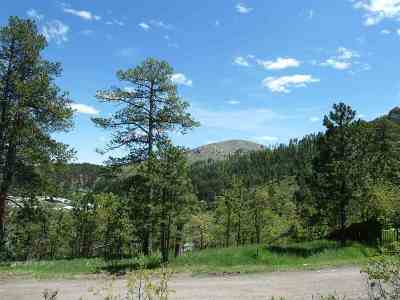 Deadwood, Lead Residential Lots & Land For Sale: 21 Park