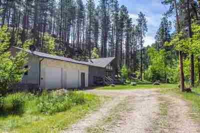 Sturgis SD Single Family Home For Sale: $520,000