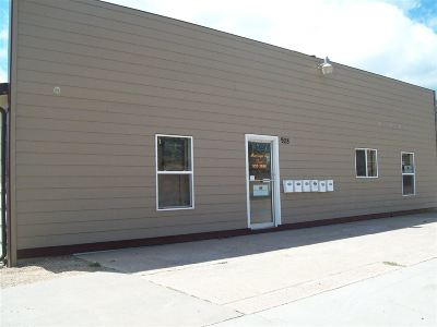 Sturgis Commercial For Sale: , 938, Lazelle