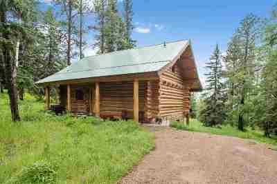 Lead Single Family Home For Sale: 11047 Buffalo