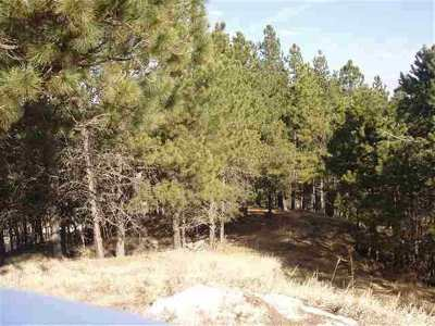 Pennington County Residential Lots & Land For Sale: 447 Pine