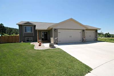 Sturgis SD Single Family Home Financing Contingency: $319,000