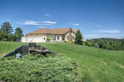 Sturgis Single Family Home For Sale: 1139 Foothills