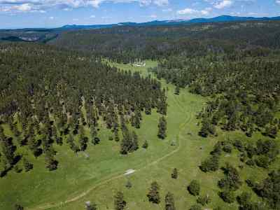 Deadwood, Lead Residential Lots & Land For Sale: 10232 Stolen Kiss Rd