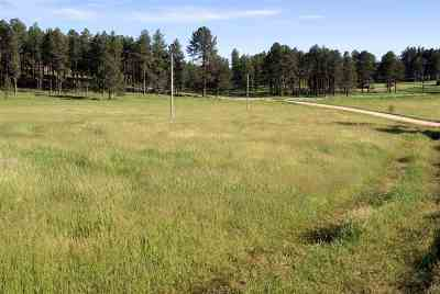 Custer SD Residential Lots & Land Sold: $172,500