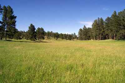 Custer SD Residential Lots & Land For Sale: $162,000